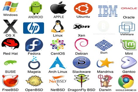 evaluating the various operating systems How many different kinds of information system are there  the highly structured information provided by these systems allows managers to evaluate an organization .